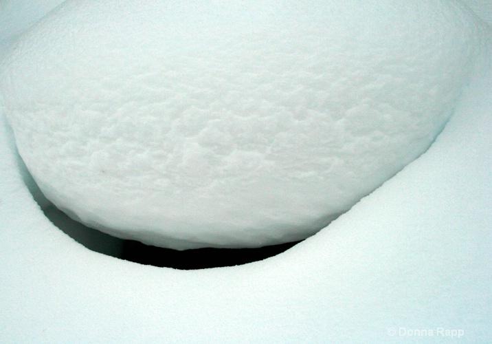 snow crevice - ID: 8478906 © Donna Rapp