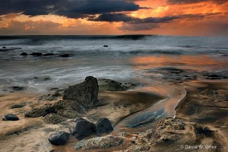 Kaena Point Shoreline