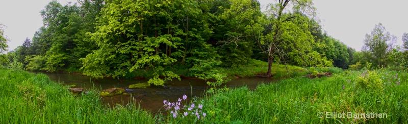 Elk Creek - ID: 8503455 © Elliot S. Barnathan