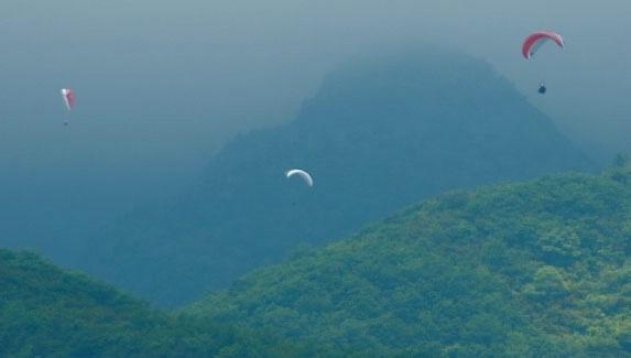 parachutte - ID: 8518395 © Kitty R. Kono