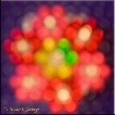 ~ Bokeh Bouquet ~