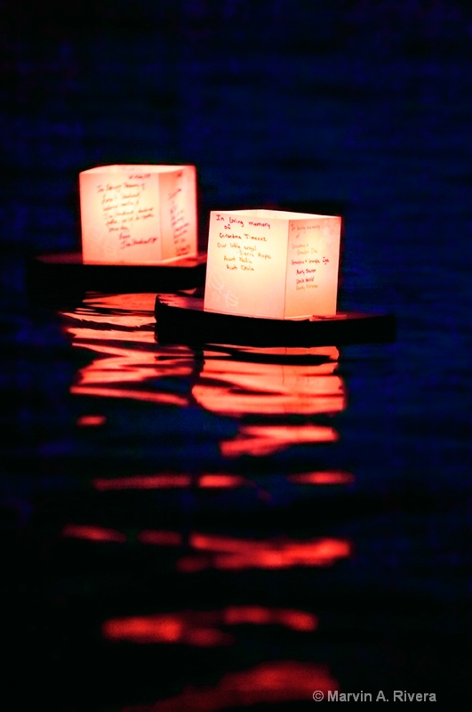 Lanterns Floating