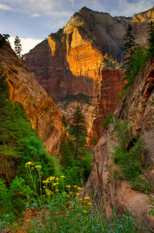 Sunset Down the Canyon