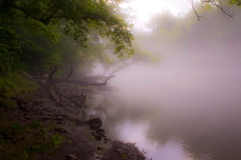 Clinch River fog
