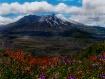 Mt St Helens in B...