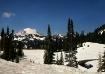 Mt Rainier from C...