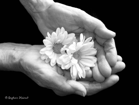Hands That Nurture