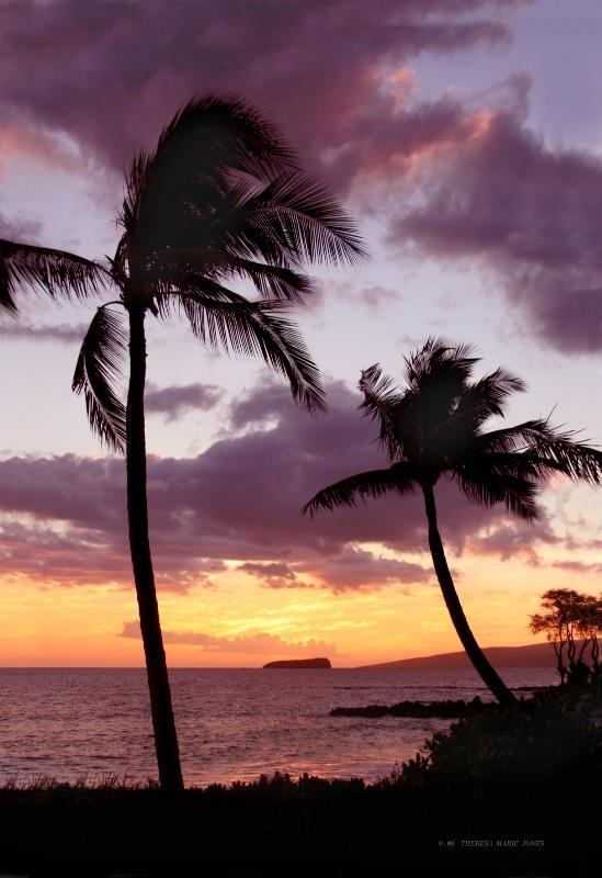 Kahalui, Hawaii - ID: 8651774 © Theresa Marie Jones