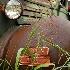 2Farm Truck - ID: 8659550 © Sherry Karr Adkins