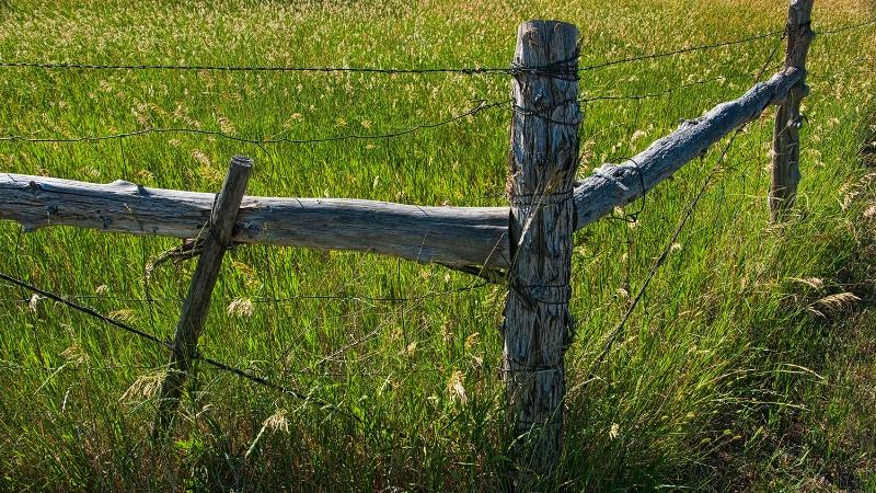 Fence Corner 418
