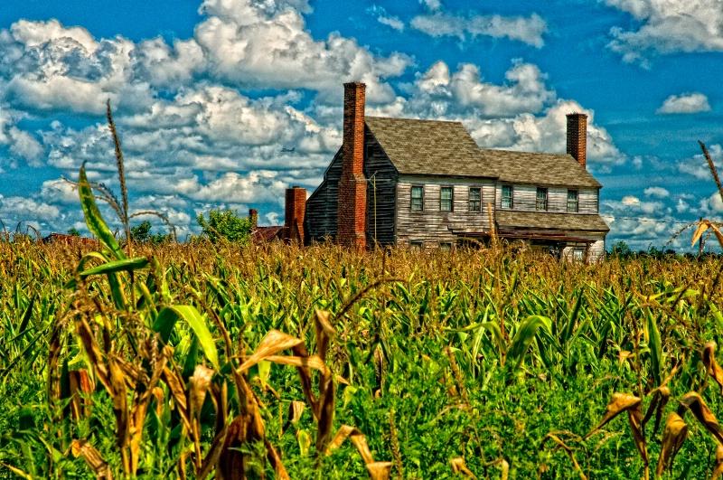 Ivor Peanut Farm