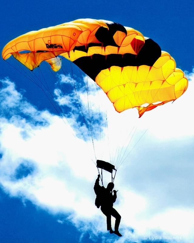 Golden Parachute - ID: 8698285 © Lydia Williams