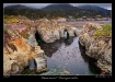 point lobos state...