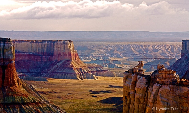 Coalmine Canyon HTM-189 - ID: 8701669 © Lynette M. Tritel