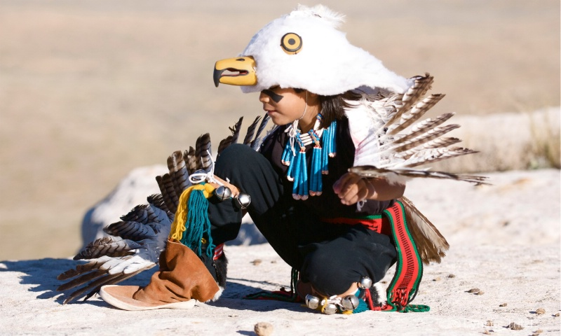 Eaglet Dancer with Moccassin HTM-344 - ID: 8701672 © Lynette M. Tritel