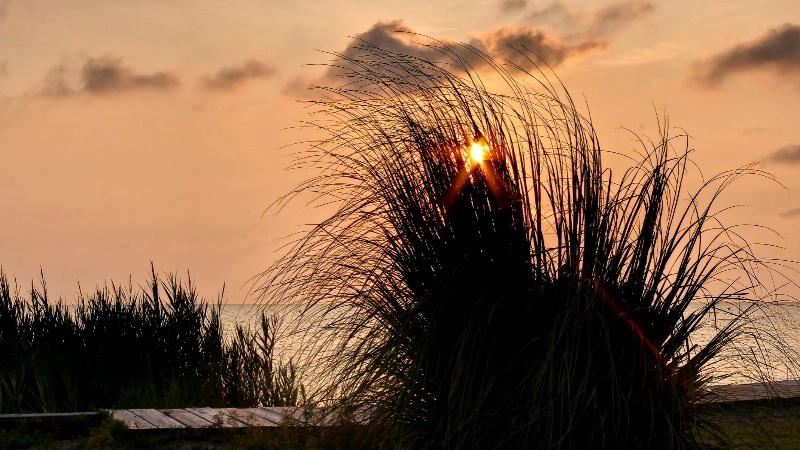 Sunset over Pimlico Sound