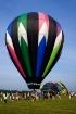 Hot Air Balloon F...