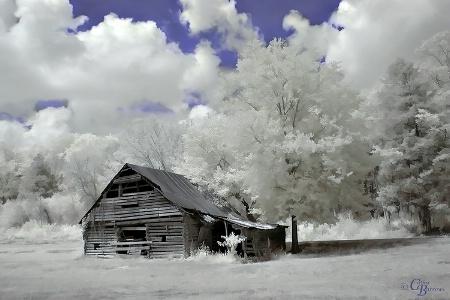 Joann's Barn