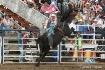 Bronc Riding at W...
