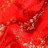 2New Year's Silk - ID: 8753738 © Gary W. Potts