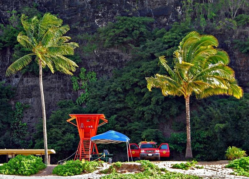 Tunnel Beach - ID: 8766388 © Clyde P. Smith