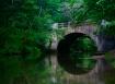 Calm Water Bridge