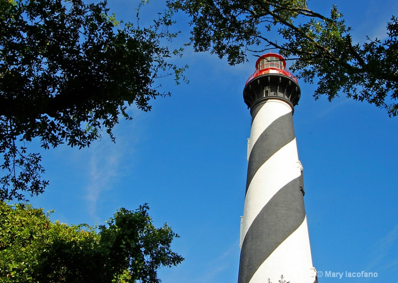 St Augustine Lighthouse - ID: 8781903 © Mary Iacofano