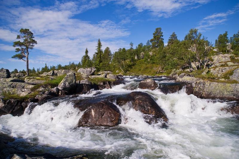 Creek Haukeligrend