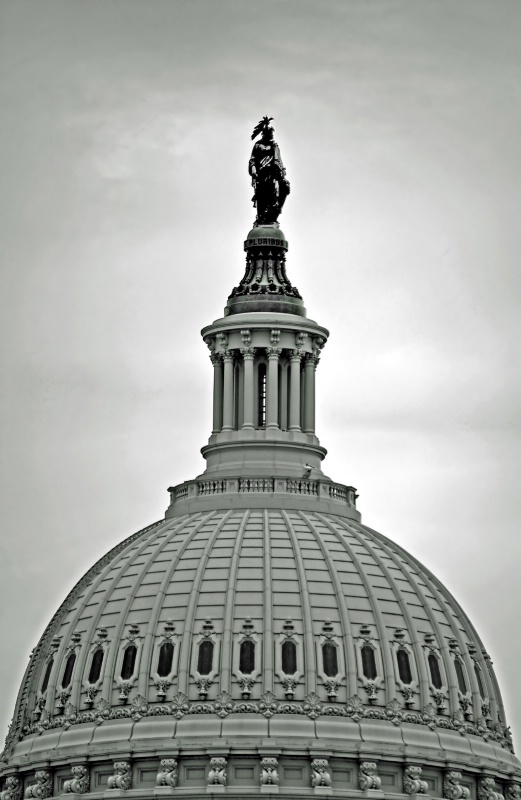 The Capitol Dome  - ID: 8815227 © Clyde P. Smith