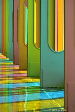 Lines & Colors