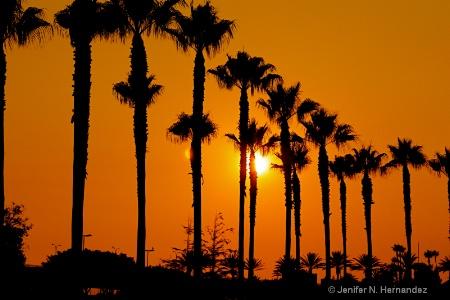 paradise in So Cal