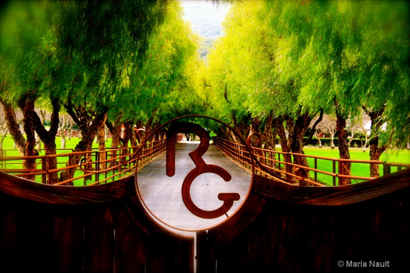 The Ranch ~ Ojai, CA - ID: 8837419 © Simply  Nonna