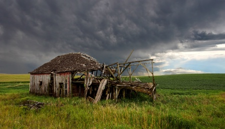 Weathering the Storm