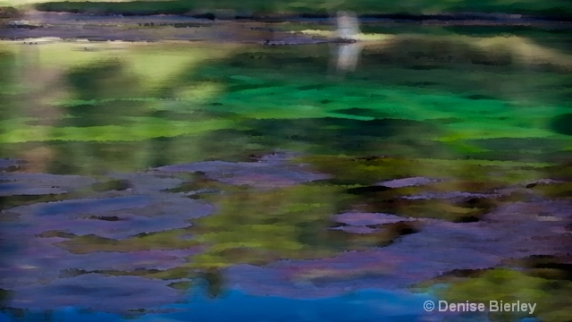 Impressions of a thermal pond - ID: 8863299 © Denise Bierley