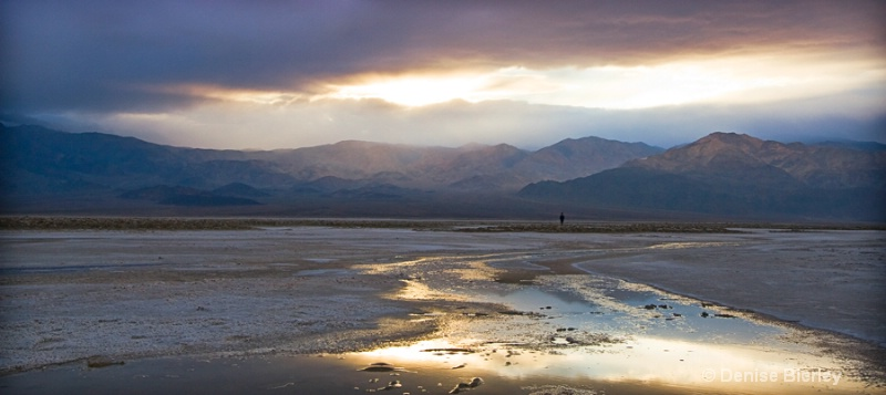 Desert Solitude - ID: 8863302 © Denise Bierley
