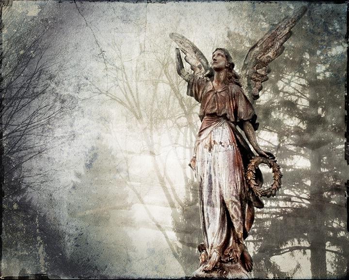 In the Garden of Good & Evil