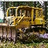 © Denny E. Barnes PhotoID# 8885265: D6C Cat, Logging-Oregon
