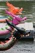 Dragonboat Lineup