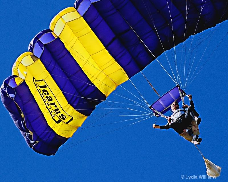 Tandem Flight - ID: 8990727 © Lydia Williams