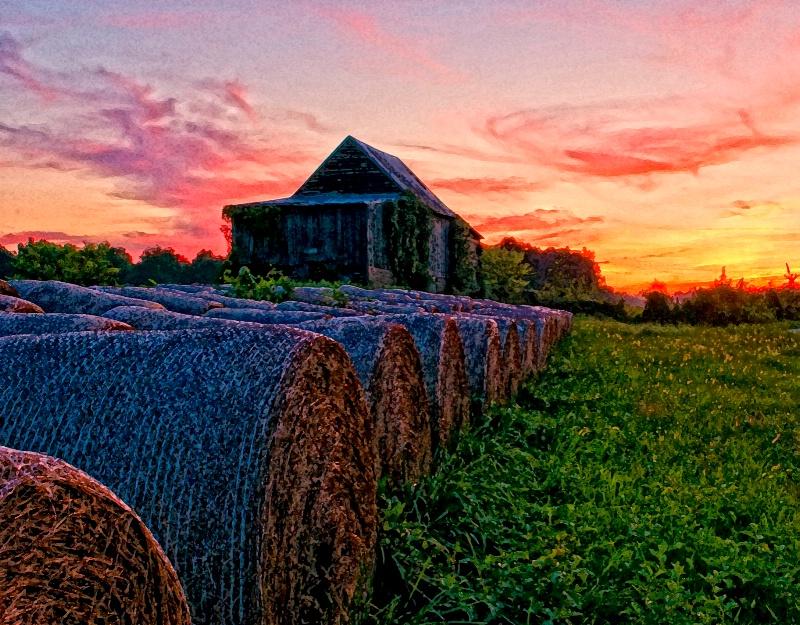 Dry Brush Sunset
