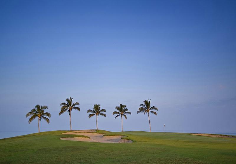 Trapped in Hawaii - ID: 9023306 © Jeff Robinson