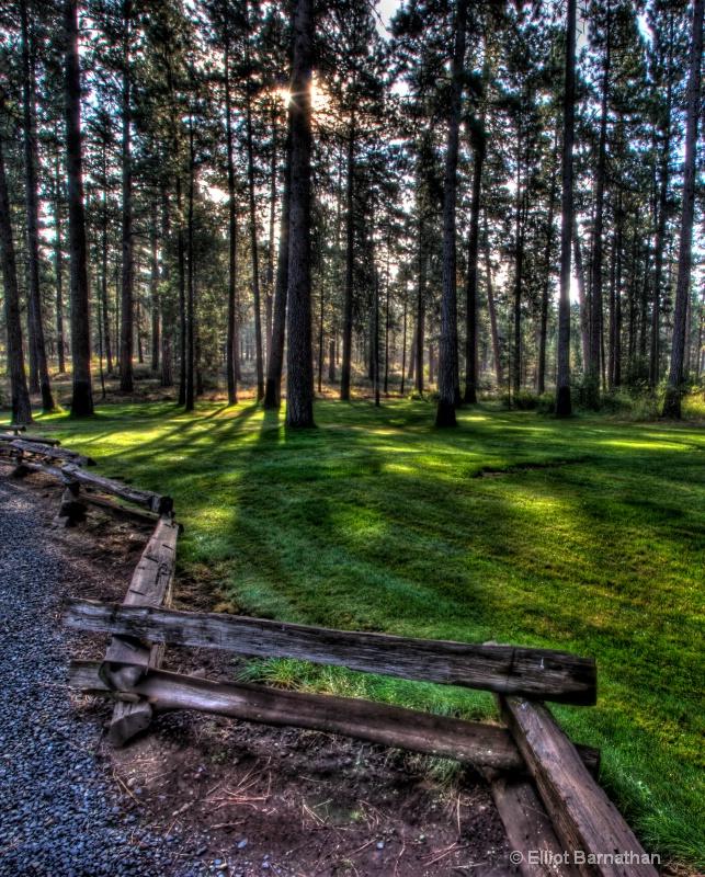 Oregon 3 - ID: 9049994 © Elliot S. Barnathan