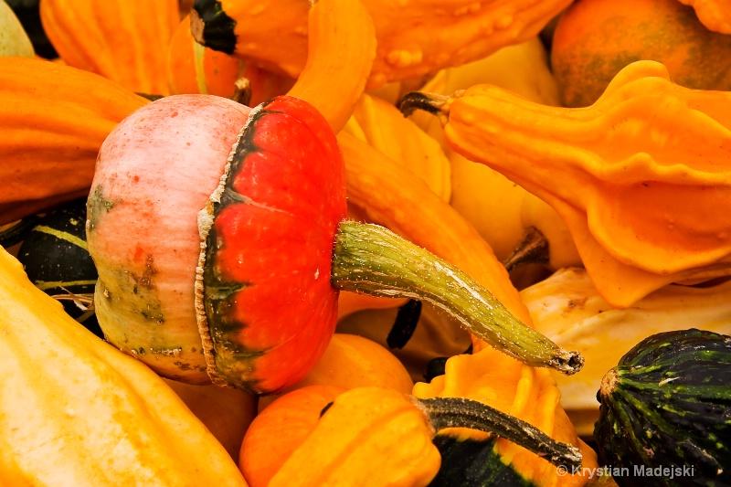 Pumpkins - ID: 9089900 © Krystian Madejski