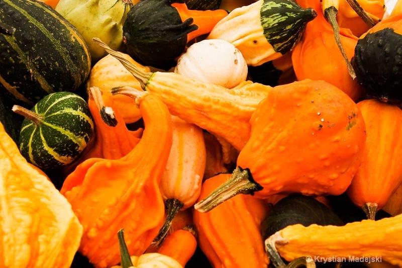 Pumpkins - ID: 9089903 © Krystian Madejski