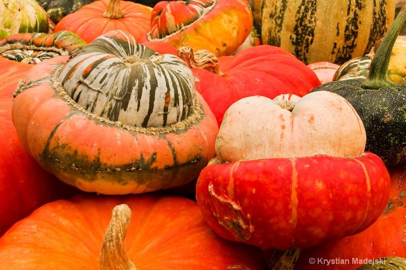Pumpkins - ID: 9089904 © Krystian Madejski