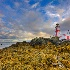 © Randy D. Dinkins PhotoID # 9091697: East Quoddy Head Light
