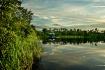 Cypress Lake refl...