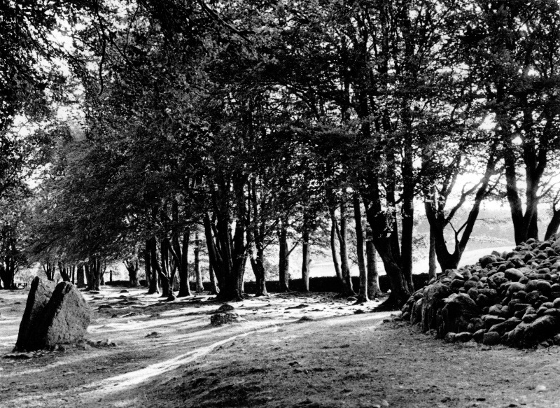 Clava Cairns Shadows - ID: 9160044 © Joan E. Bowers