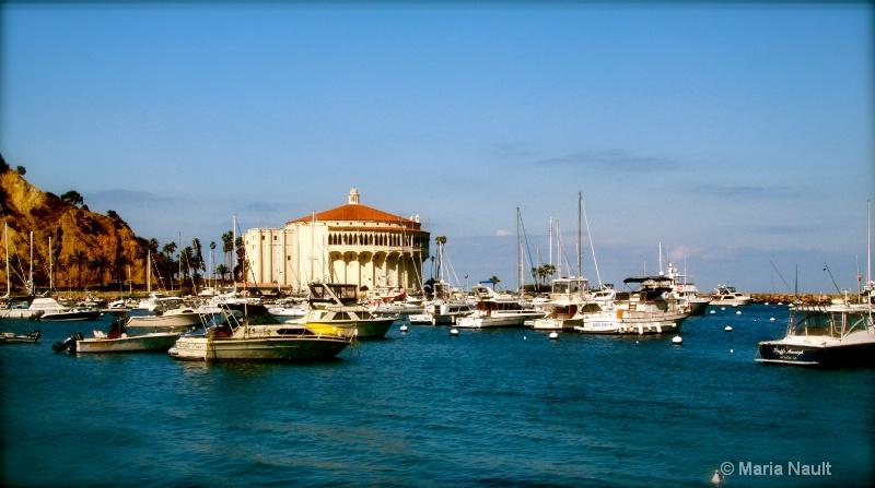 Island View ~ Catalina Island, CA - ID: 9171298 © Simply  Nonna