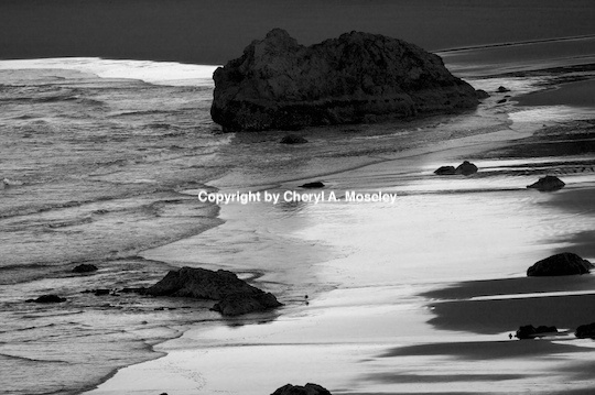 - ID: 9175252 © Cheryl  A. Moseley